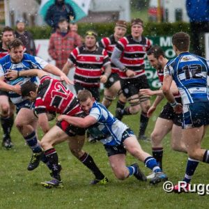 Ilkley RFC 2015-2016 National League 3 North